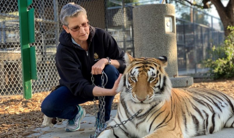 Moorpark College's Zoo Operations Supervisor Is Awarded The American Association Of Zoo Keepers Lifetime Achievement Award