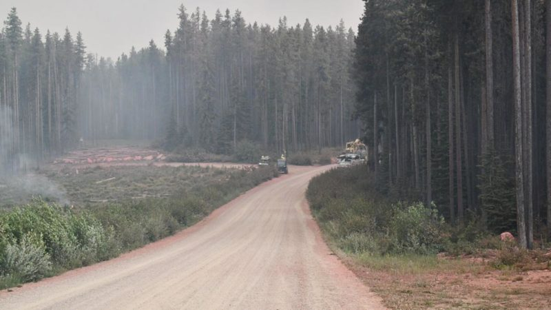 Evacuations Underway As Californias Largest Wildfire Spread