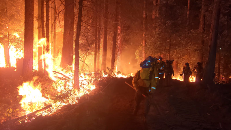 PGE Charged With 4 Counts Of Manslaughter 11 Felonies Stemming From 2020 Zogg Fire