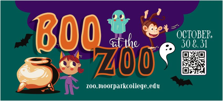 """""""Boo At The Zoo"""" Offers No Tricks, Just Treats"""